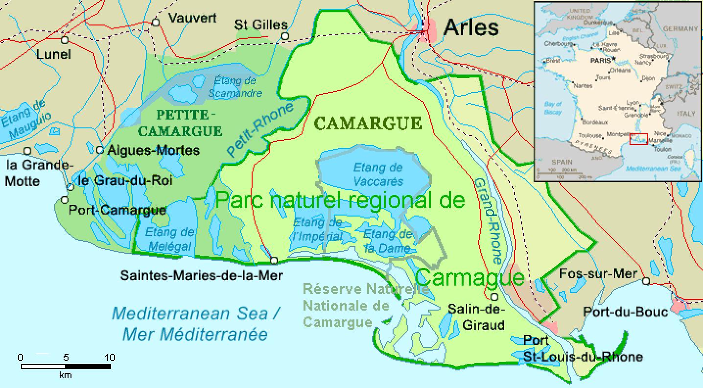 Paarden in Frankrijk - Formilangue