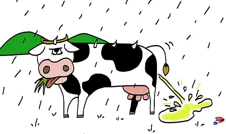 pleuvoir regenen
